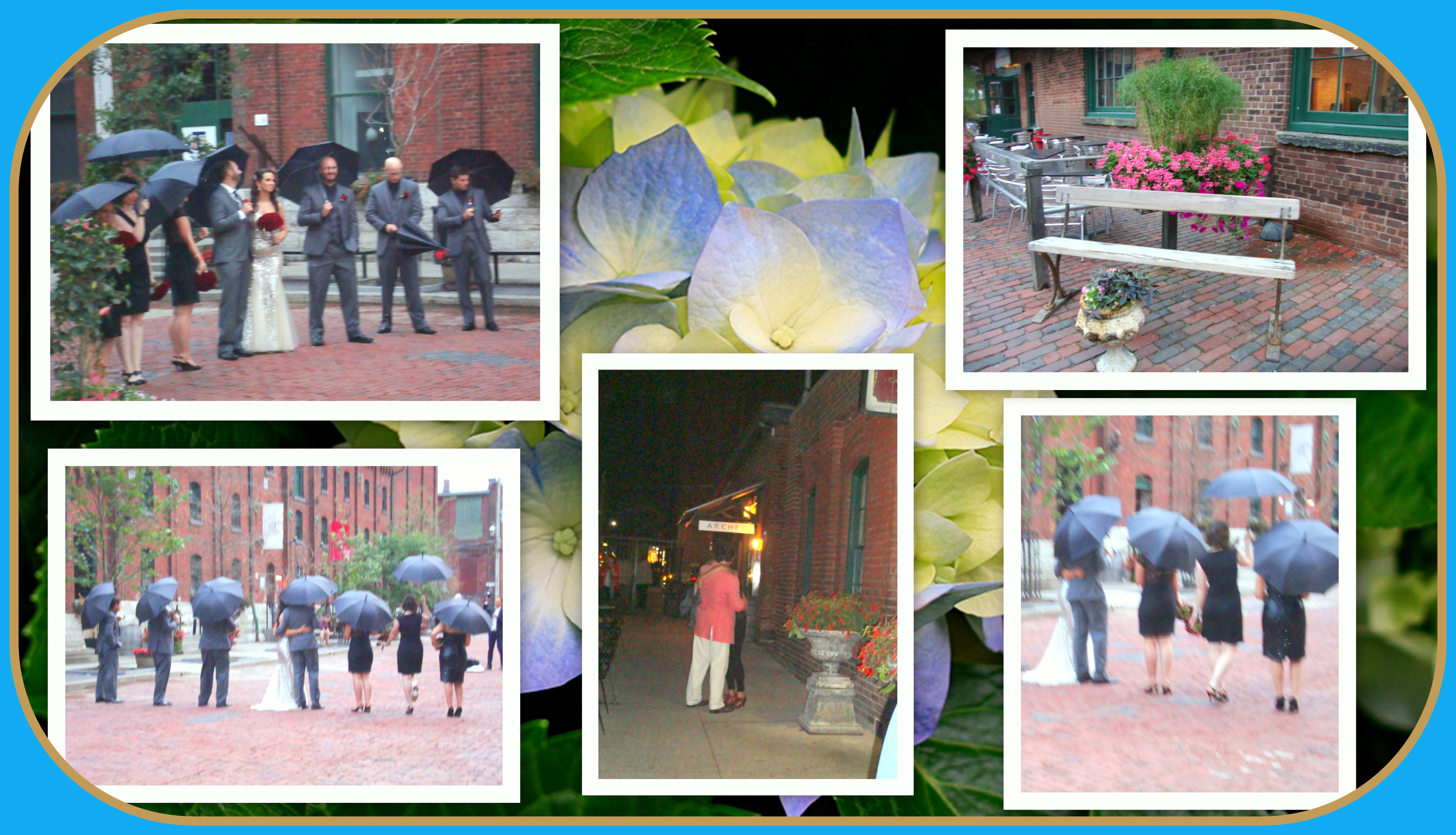 Romance In The Distillery District Late Blooms